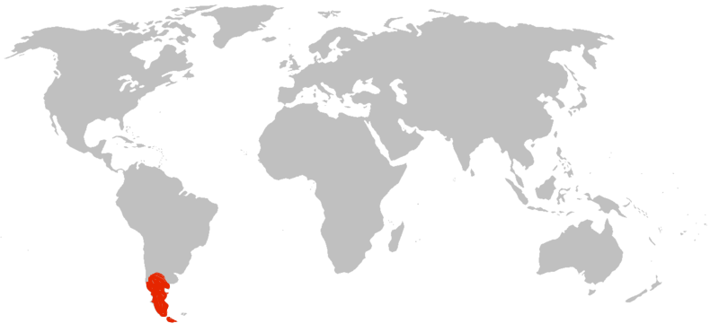 patagonie-sur-la-carte-du-monde